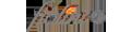 fiolini.de- Logo - Bewertungen